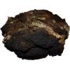 Cухой березовый гриб Чага
