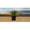 Капсульный почвообразователь из сапропеля против эрозии земель