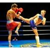 Бокс и кикбоксинг в Москве. Первая тренировка бесплатная