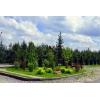 Продается лесной участок в коттеджном поселке Подмосковья