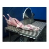 Циркулярная пила ZKM 75-08-Т для распиловки свиней, овец