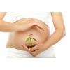 Курсы для беременных Мамина Шкатулка в Отрадном