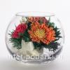 Цветы натуральные в стекле ( герберы ) - доставка по РФ