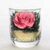 Цветы натуральные в стекле ( розы ) - доставка по РФ