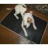 Обогреватель-коврик для животных