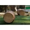 Удаление и кронирование деревьев в Пушкино