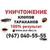 Уничтожение клопов и других насекомых.
