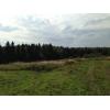 Земельный участок вблизи леса и воды. Продажа.